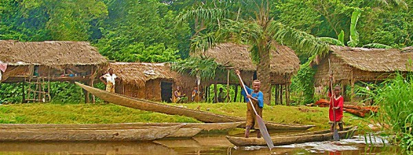 Village in Congo